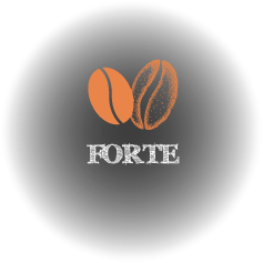 forte_icon