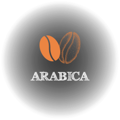 arabica_chicchi_icon